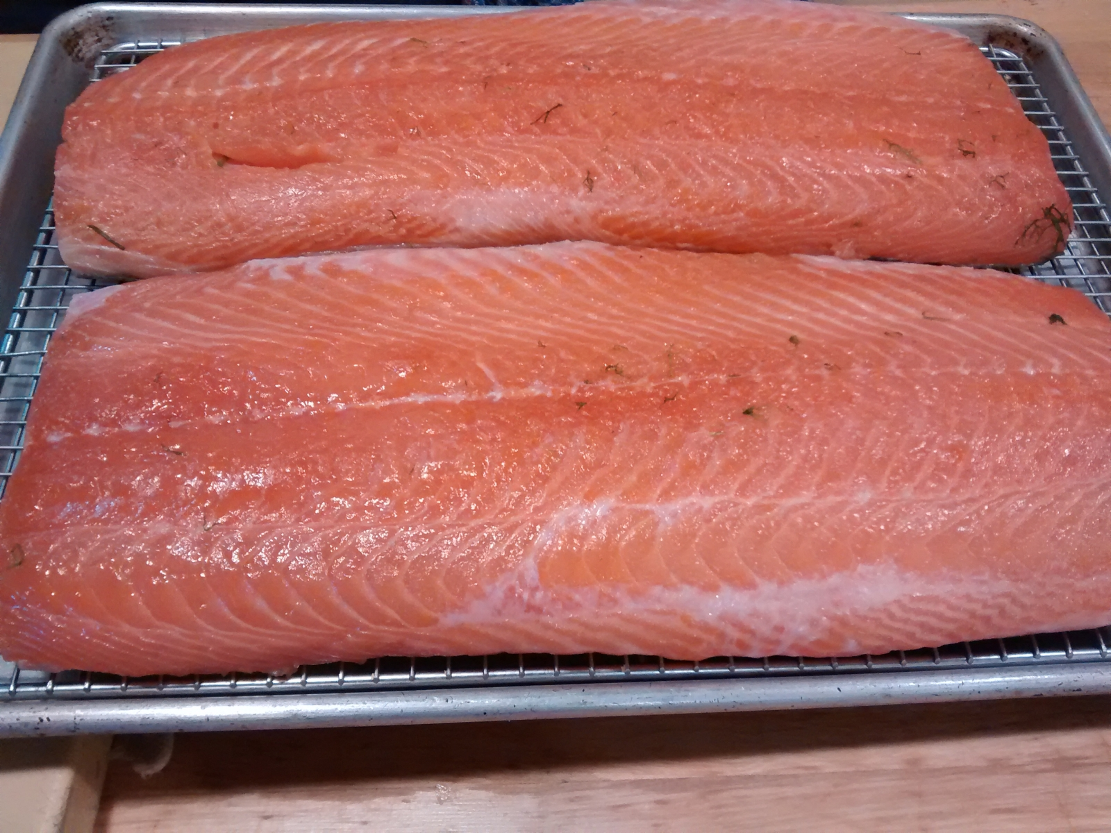 Salmon becoming Gravlax